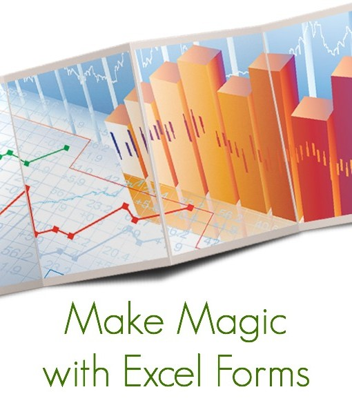 makemagicwithexcelforms_0600x0600
