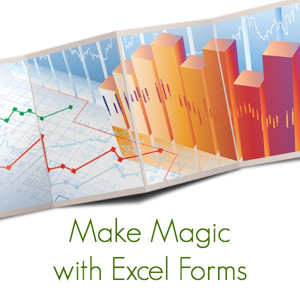 how to make a form in excel